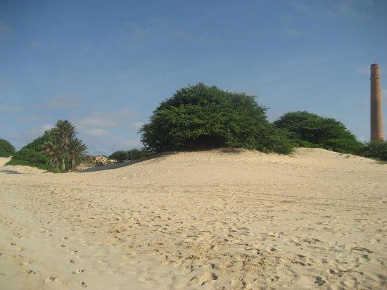 Iberostar Club Boa Vista : plage hotel