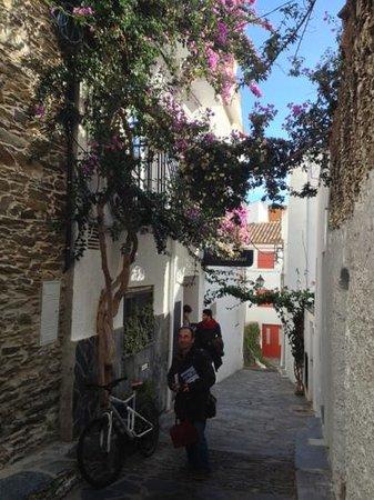 Es Balconet : La facade et son balconnet fleuri