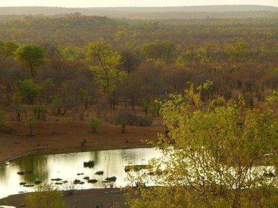 Victoria Falls Safari Lodge: Vue de la chambre