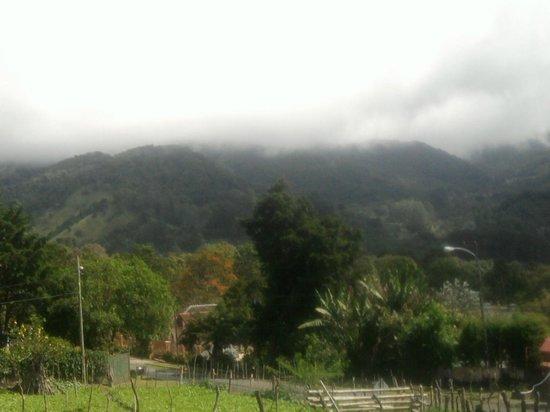Casa Pedro: hermosa vista