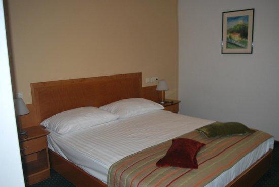 Central Hotel: La camera molto spaziosa