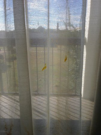 Motel 6 Conyers GA: more of dirty curtain