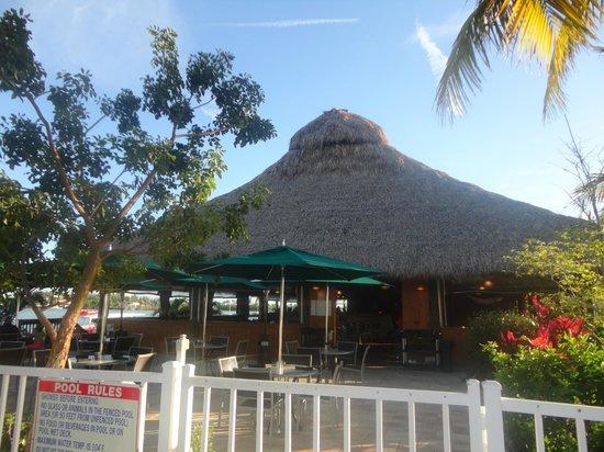 Tarpon Creek Bar & Grill: le restaurant vu depuis l'hôtel