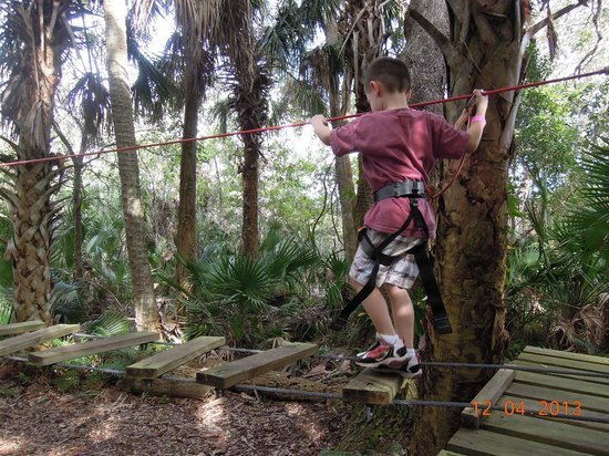 Treetop Trek: Chutes and Ladders course