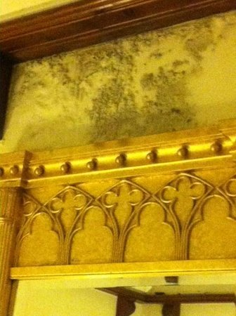 Lewtrenchard Manor : Mould on room walls