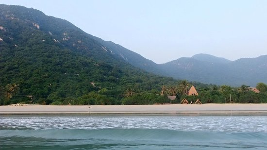 Jungle Beach VietNam: Jungle Feeling mit Vollpension