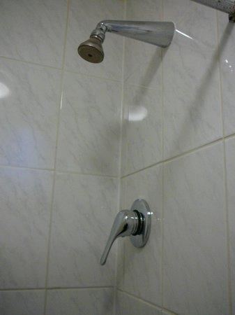 Cardiff Hotel: Shower