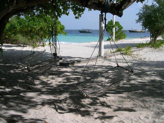Asdu Sun Island: Amaca