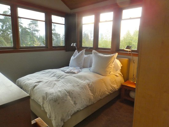 Coast Cabins: sleeping in the treetops