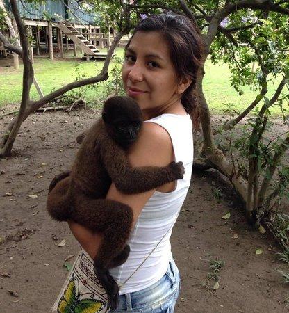 Emperador Terraza: Isla de Los monos- Iquitos