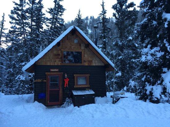 Pioneer Guest Cabins: Cottonwood Cabin @ Xmas