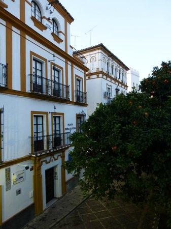 Hotel Boutique Elvira Plaza: Desde habitación