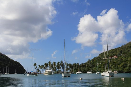 Solomon Water Taxi & Tours: Our lunch view