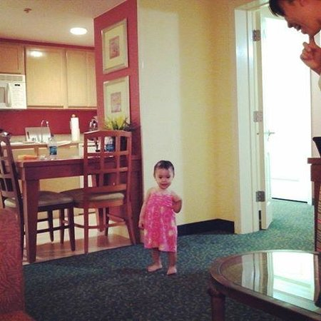 Homewood Suites by Hilton Orlando-Nearest to Univ Studios: rm 503