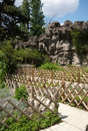 vegetable garden foto di jardin d 39 acclimatation parigi tripadvisor. Black Bedroom Furniture Sets. Home Design Ideas