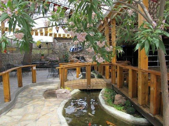 Aceitunas Beer Garden