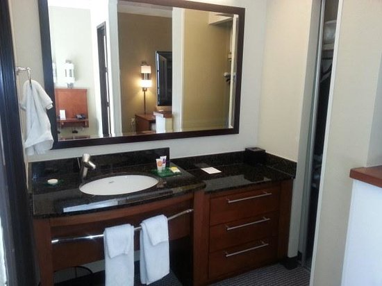 Hyatt Place Atlanta Airport North: Sink area