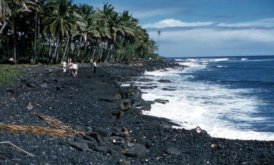 Coconut Cottage Bed & Breakfast: Enjoy the black sand beaches