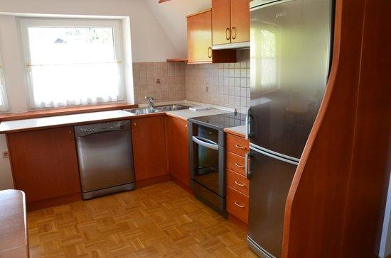 Vila Cvetka Apartments: Kitchen area