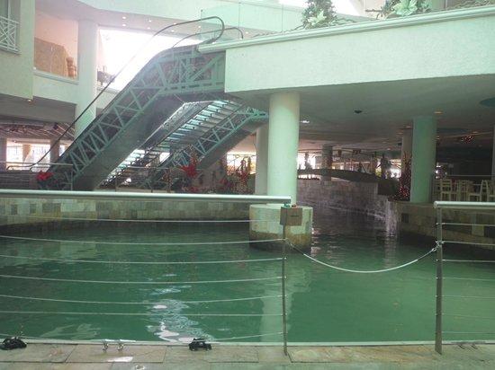 Renaissance Aruba Resort & Casino: Water Taxi pick-up area