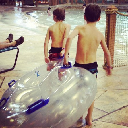 Great Wolf Lodge : Kids walking tube up the stairs