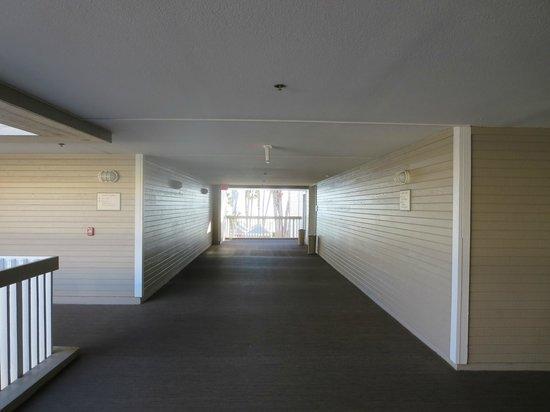 Coronado Island Marriott Resort & Spa: room corridors with views