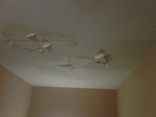 Comfort Suites : Ceiling in the stairway contained black mildew and was drooping