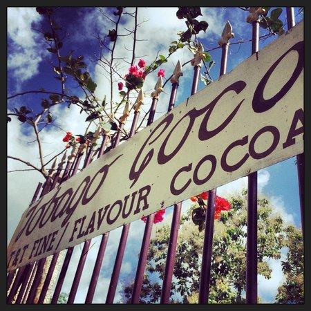 Castara Retreats: Tobago Cocoa Plantation