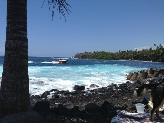 Coconut Cottage Bed & Breakfast : Gorgeous Poihiki Beach minutes from our property