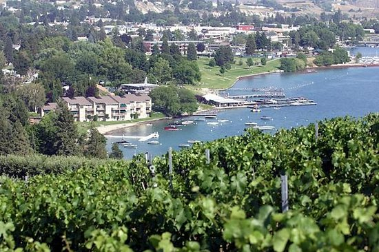 Image result for Vin du Lac in Lake Chelan