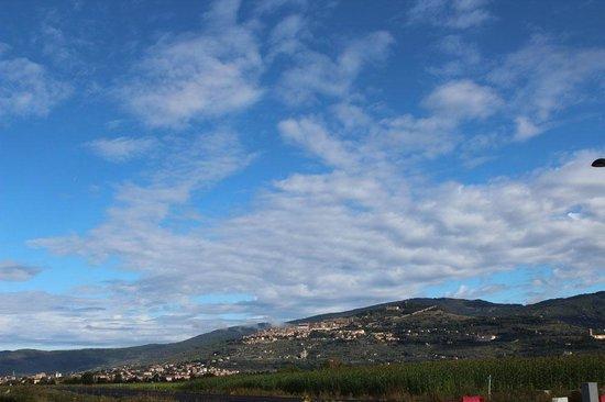 Villa Toscana La Mucchia : Corn fields in Camucia looking towards Cortona just up the road