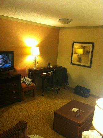 Embassy Suites by Hilton Atlanta - Galleria: Living room area