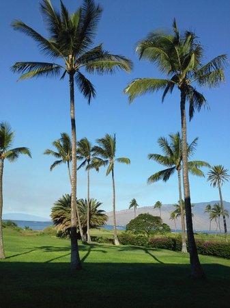 Luana Kai Resort : View off the lanai.