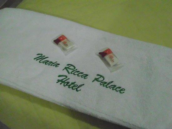 Maria Ricca Palace Hotel: Utensílios e rouparia super limpos e agradaveis