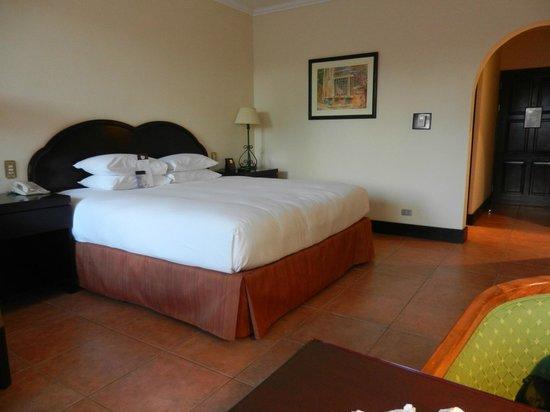 DoubleTree by Hilton Hotel Cariari San Jose: 3