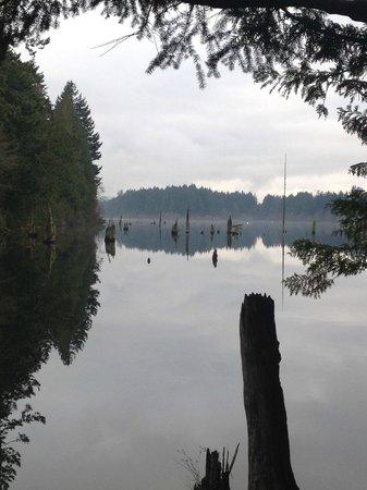 Westwood Lake Park: Westwood Lake