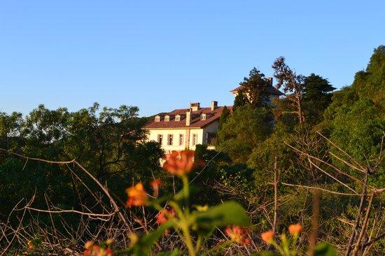 Castillo de Mandl: Desde el parque...