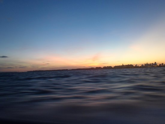 Thriller Miami Speedboat Adventures: Miami