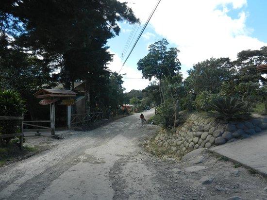 Monteverde Villa Lodge: Around town