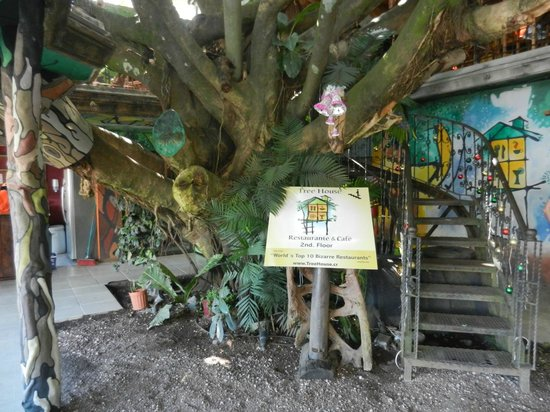 Monteverde Villa Lodge: Around town