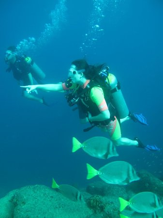 Scuba Diving in Cabo: OMG what is that!