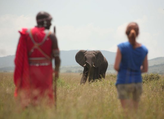 Sarova Mara Game Camp: Walk with the Maasai