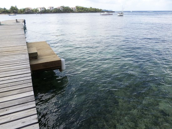Half Moon Resort: Dive Boat  Dock, on the Hotel