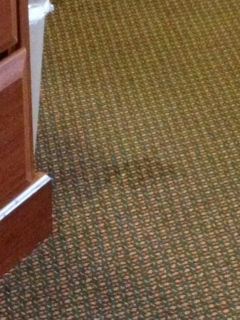 Quality Inn Creekside : Stains