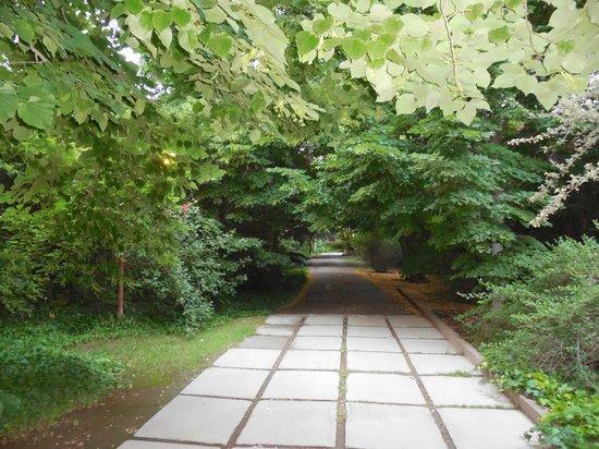 Casa Glebinias: View as you enter the gate