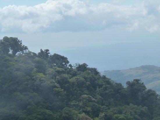 Sky Adventures - Monteverde Park : Vista al pacífico
