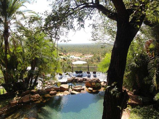Victoria Falls Safari Lodge : Piscina com mirante e cascata