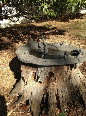 Fire Mountain Inn : Bird bath