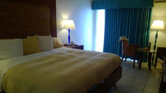 Divi Flamingo Beach Resort and Casino : King Room
