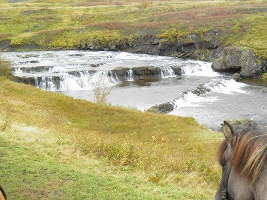 Laxnes Horse Farm : Rest Stop